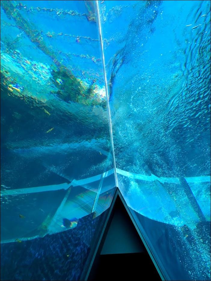 三角形の大水槽