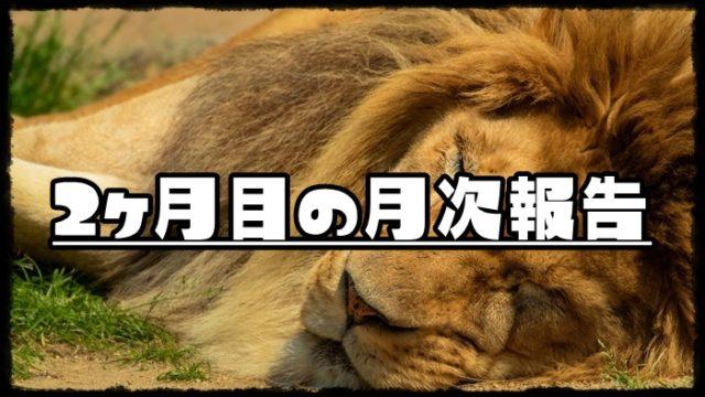 寝ているライオンの画像