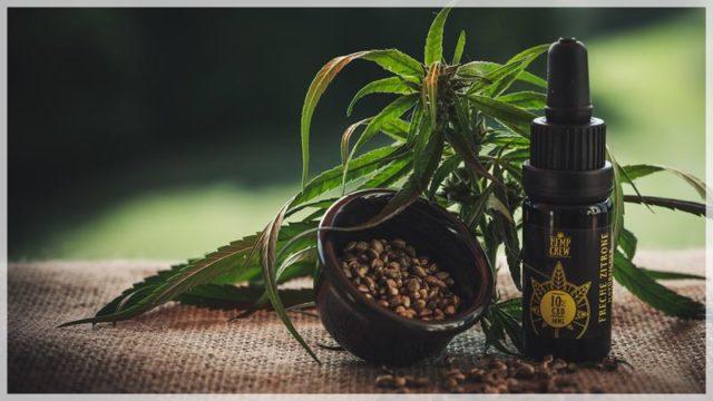 【CBDリキッド】大麻だから違法?効果的な吸い方やおすすめ商品を紹介