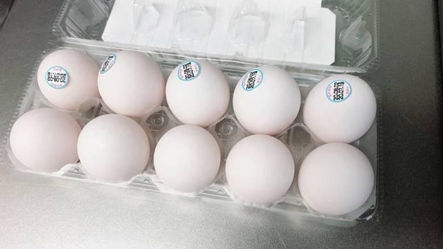 10個入りの卵パック
